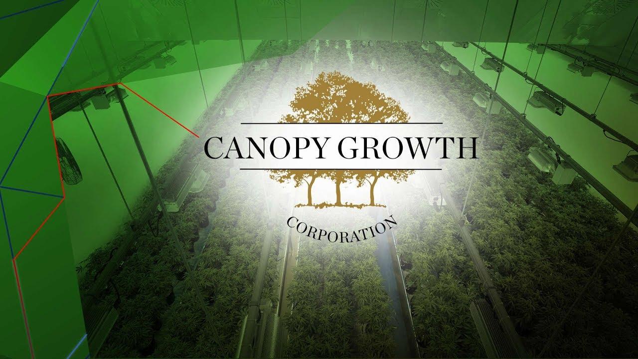 Action Canopy Growth : tout savoir avant de l'acheter