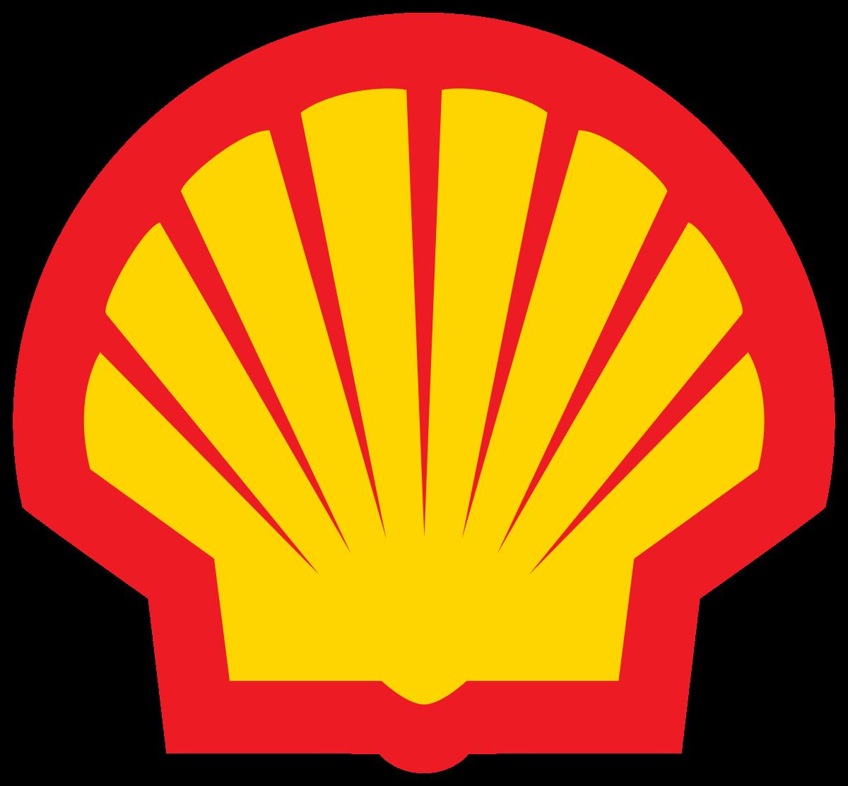 Action Shell : tout savoir avant de l'acheter